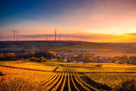 París apuesta por las granjas urbanas para construir un futuro más sostenible