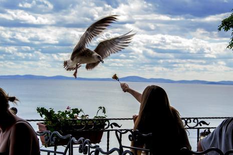 5 restaurantes españoles en los que comer bien al aire libre